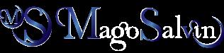 Mago Salvin Logo